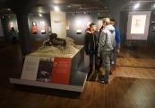"""Pokaż powiększenie powyżej: Program """"Kultura dostępna"""" w Państwowym Muzeum na Majdanku"""