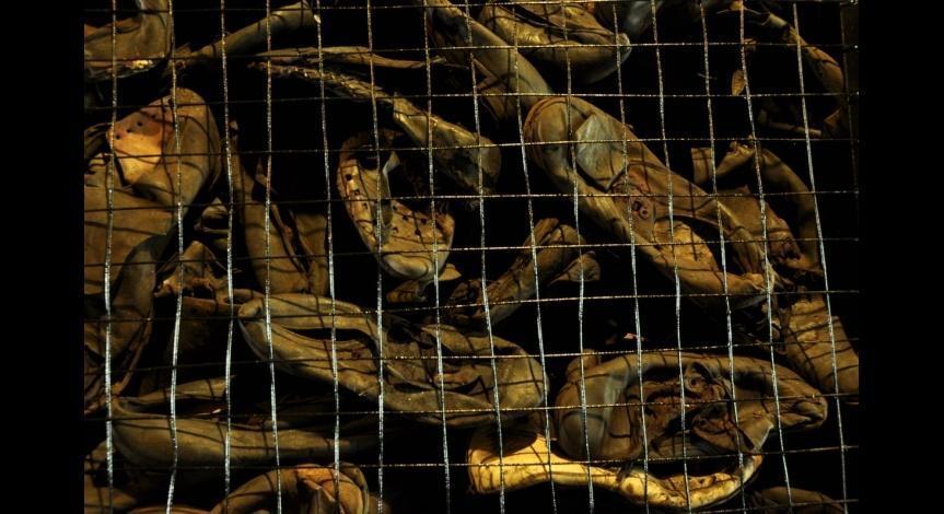"""Ekspozycja butów ofiar """"Akcji  Reinhardt"""" - Państwowe Muzeum na Majdanku"""