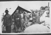 Pokaż powiększenie powyżej: Rodziny cygańskie w obozie pracy w Bełżcu, Arch. Muzeum Regionalnego im. dra Janusza Petera w Tomaszowie Lubelskim