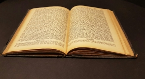 Holocaust testimonies. Excerpts…